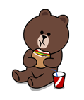 brown_and_cony-4