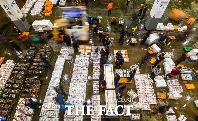서울 노량진 수산시장에서 집단감염이 발생했다. 사진은 해당 기사와 직접적 관련 없음. /이동률 기자